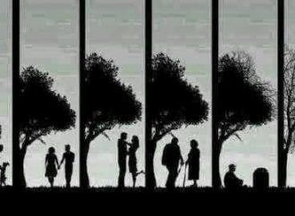 Hidup Menjalani Takdir